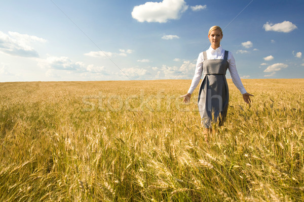 In the field of gold Stock photo © pressmaster