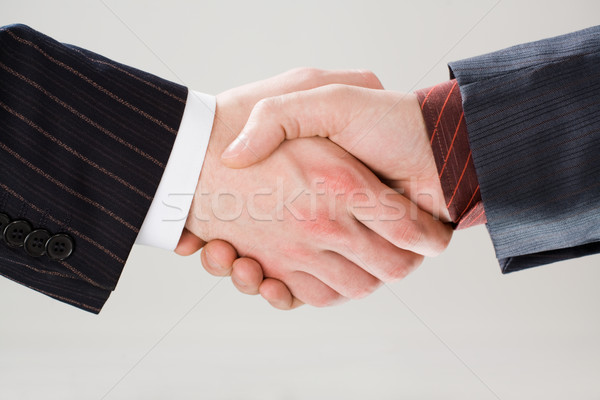 Shaking hands Stock photo © pressmaster