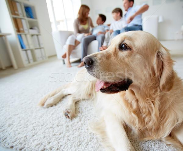 Cute psa portret domowych piętrze rodziny Zdjęcia stock © pressmaster