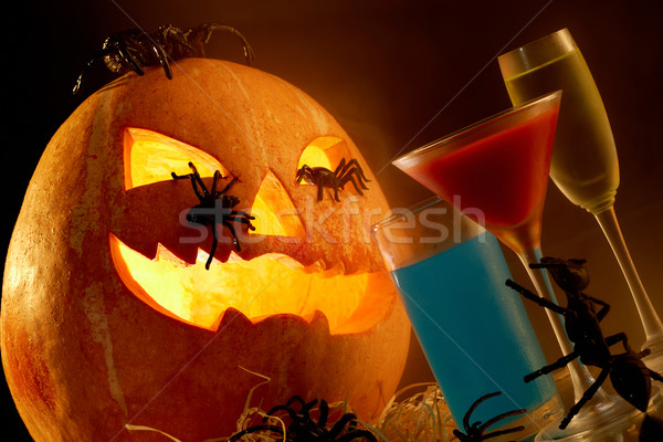 Halloween composition Stock photo © pressmaster