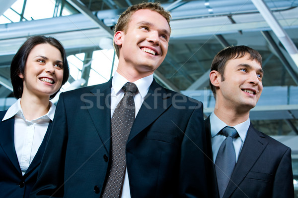 üzleti csoport portré erős üzleti csapat áll egyéb Stock fotó © pressmaster