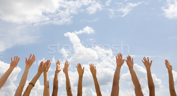 Row of hands  Stock photo © pressmaster