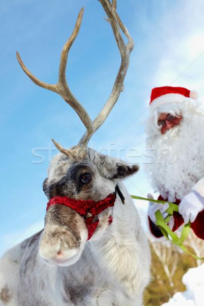 Cute rendier kerstman achter man Stockfoto © pressmaster