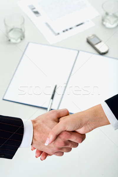 Handshake Stock photo © pressmaster