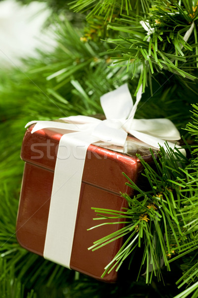 Stock photo: Gift on branch