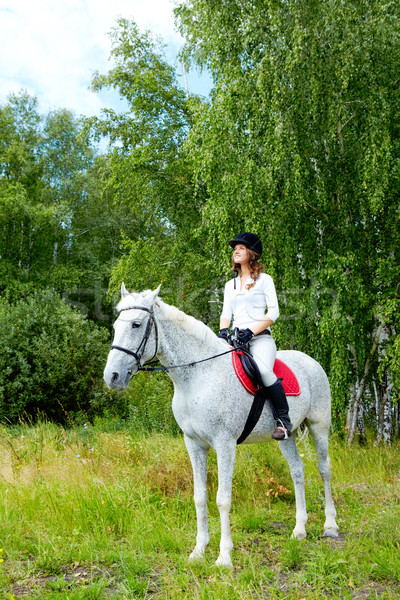 Woman on horse Stock photo © pressmaster