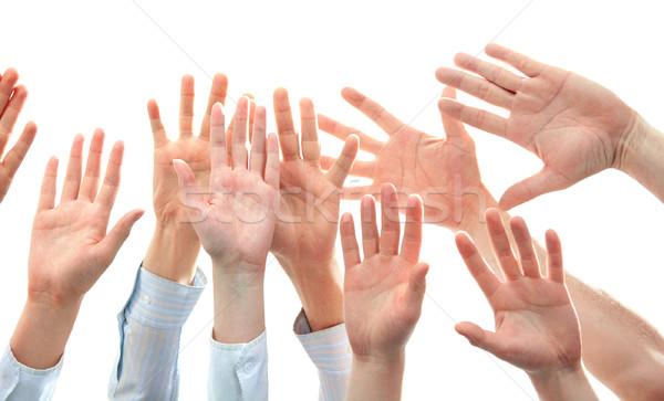 Hands Stock photo © pressmaster