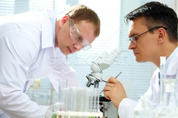 Olhando espécime cientista assistente ajuda tecnologia Foto stock © pressmaster