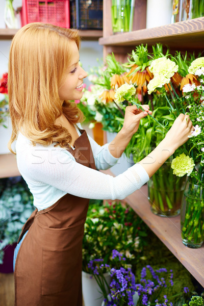 Auswahl Porträt jungen weiblichen Blumengeschäft Arbeit Stock foto © pressmaster
