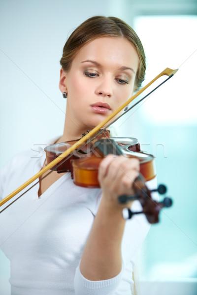 Violinist Stock photo © pressmaster
