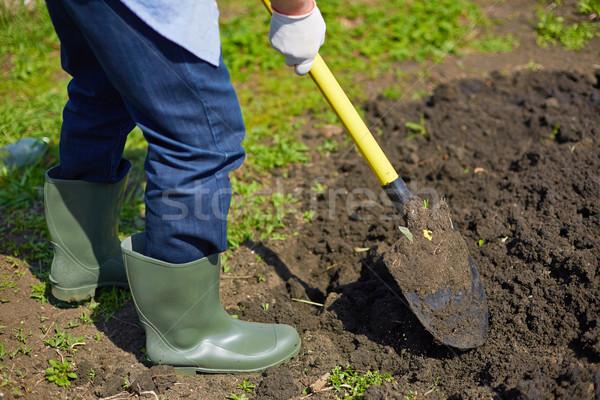 Digging soil Stock photo © pressmaster