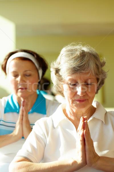 Imagine de stoc: Echilibra · portret · doua · yoga