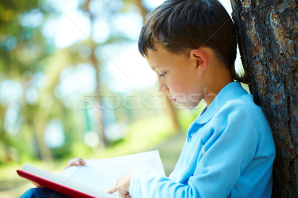 Boy reading Stock photo © pressmaster