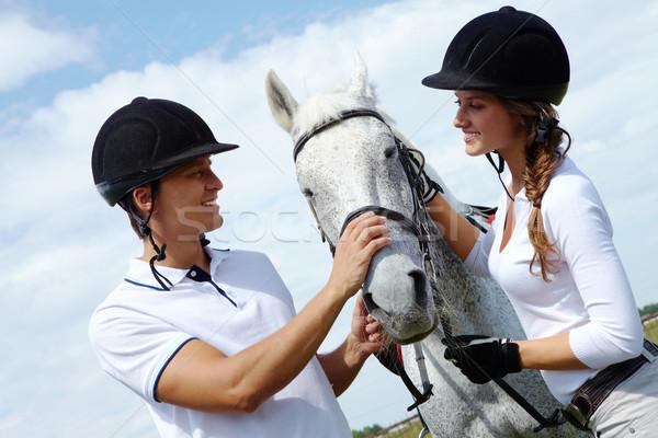 Pár kép boldog fajtiszta ló néz Stock fotó © pressmaster