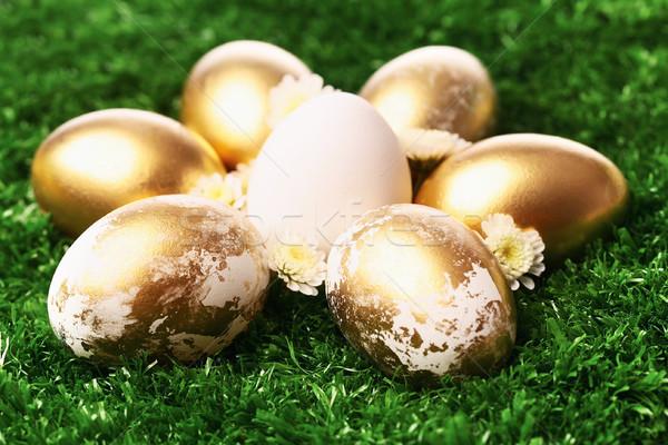 Yumurta altın paskalya yumurtası yeşil ot Paskalya bahar Stok fotoğraf © pressmaster