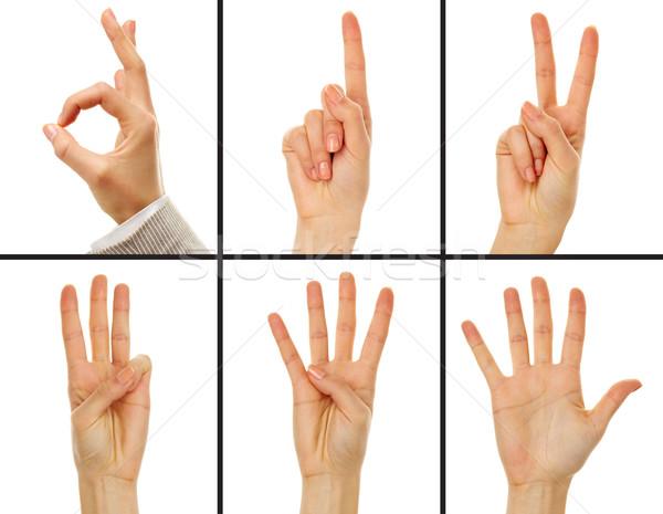 Zahlen Collage weiblichen Hand Null Stock foto © pressmaster
