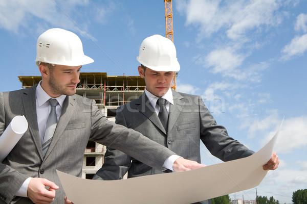 Danışman portre ortaklar bakıyor yeni inşaat Stok fotoğraf © pressmaster