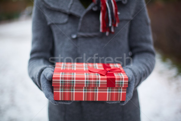 Holding giftbox Stock photo © pressmaster