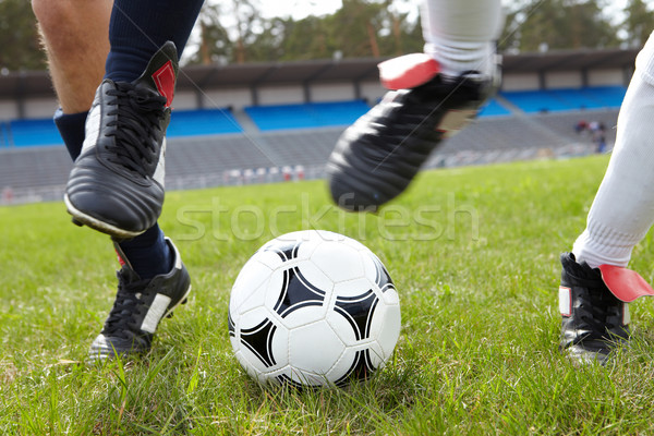 Ball chase Stock photo © pressmaster