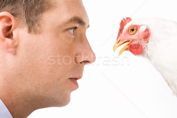 Interazione primo piano grave maschio guardando pollo Foto d'archivio © pressmaster