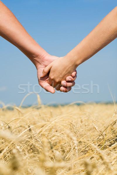 Human hands   Stock photo © pressmaster