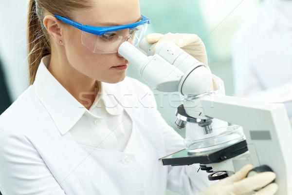 Studying chemical substance Stock photo © pressmaster