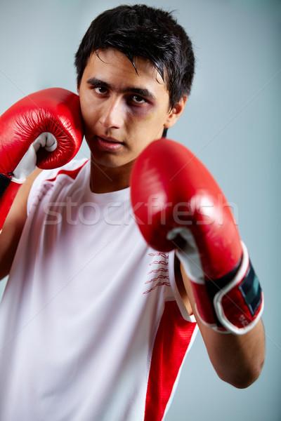 Boxeador imagen rojo guantes listo atacar Foto stock © pressmaster