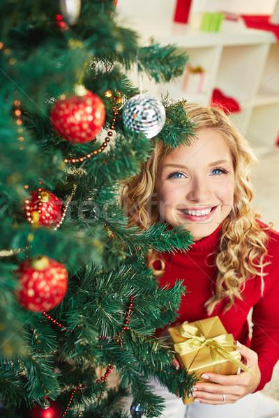 Zdjęcia stock: Christmas · obecnej · uśmiechnięty · kobiet · patrząc · kamery
