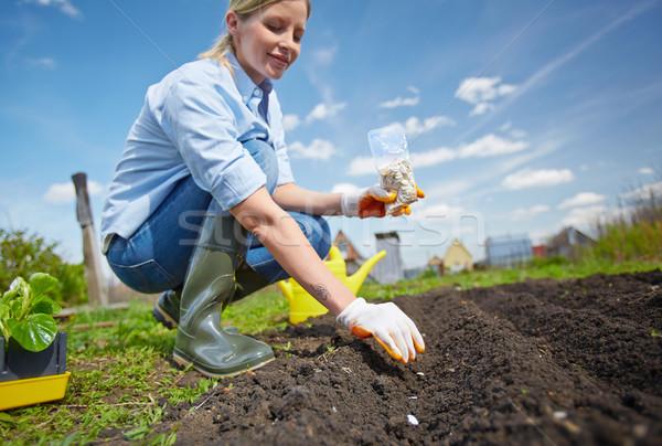 Tuin werknemer afbeelding vrouwelijke landbouwer zaaien Stockfoto © pressmaster