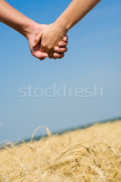 символ любви женский мужской Сток-фото © pressmaster