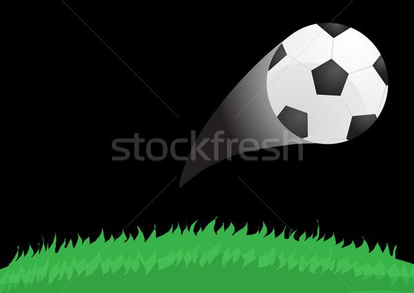 ball flying from the stadium Stock photo © pressmaster