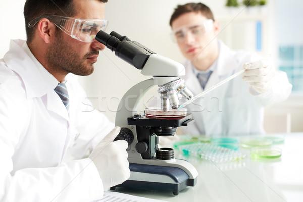 Clinical study Stock photo © pressmaster