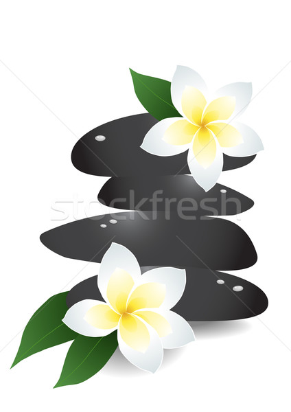 Pierres fleurs nature design fond Photo stock © pressmaster