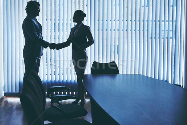Welcoming partner Stock photo © pressmaster
