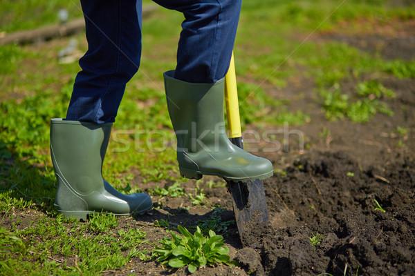 Digging Stock photo © pressmaster