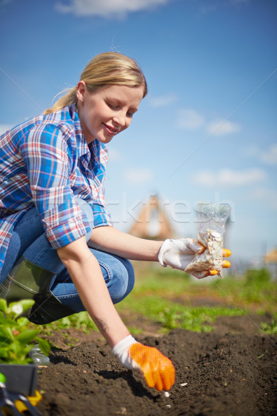 Time to sow Stock photo © pressmaster