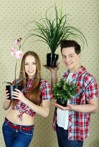 Stock fotó: Pár · növények · boldog · házi · virágok · néz