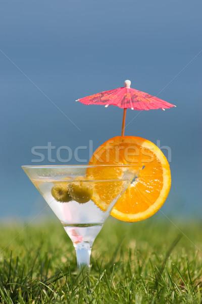 Koktajl martini glass pomarańczowy plasterka oliwek zielona trawa Zdjęcia stock © pressmaster