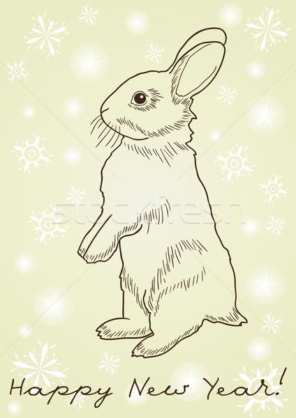 rabbit standing on hind legs  Stock photo © pressmaster