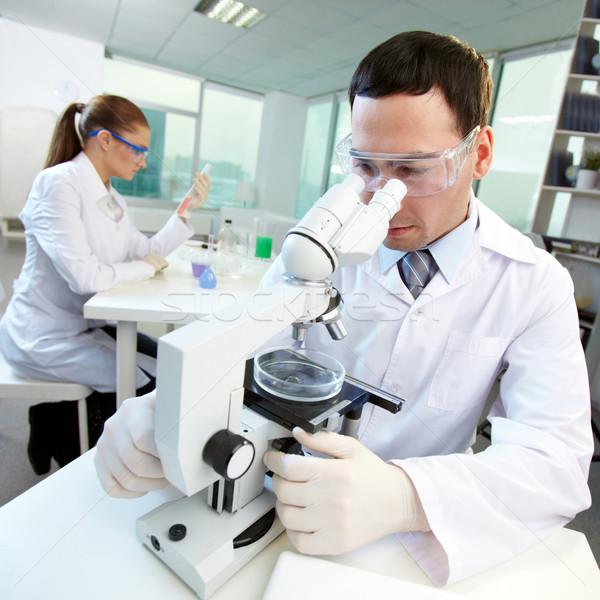 ストックフォト: ラボ · 男性 · 研究者 · 見える · 顕微鏡 · 同僚