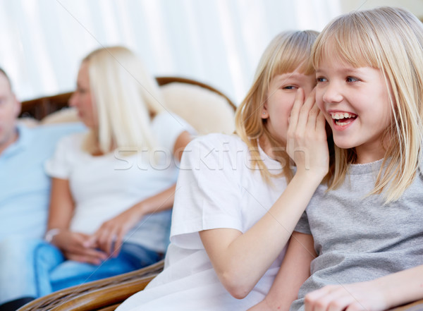 Whisper portrait fille heureuse rire jumeau soeur Photo stock © pressmaster