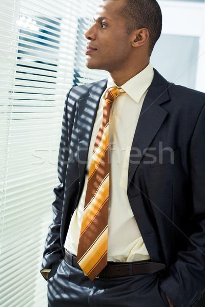 Mögött redőny komoly üzletember áll néz Stock fotó © pressmaster