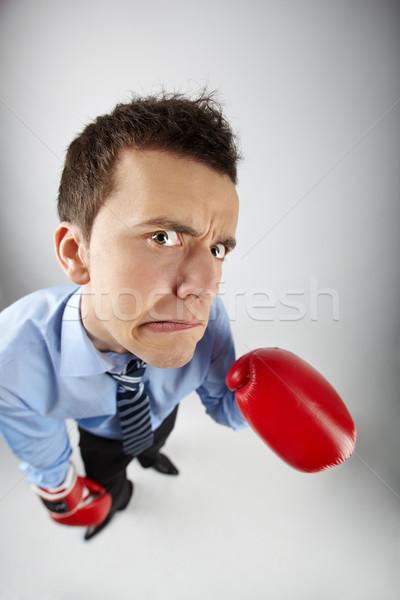 Vadászrepülő halszem elégedetlen üzletember boxkesztyűk néz Stock fotó © pressmaster