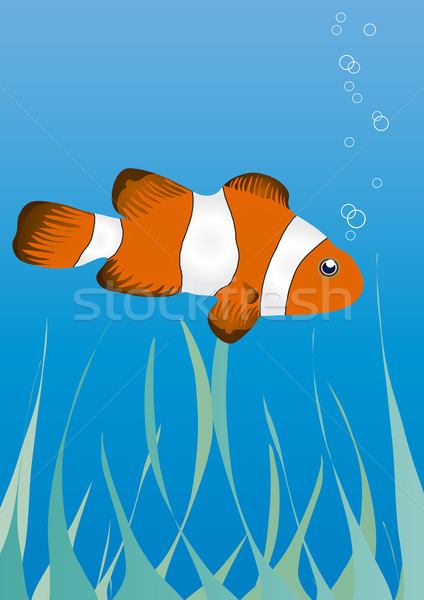 underwater Stock photo © pressmaster
