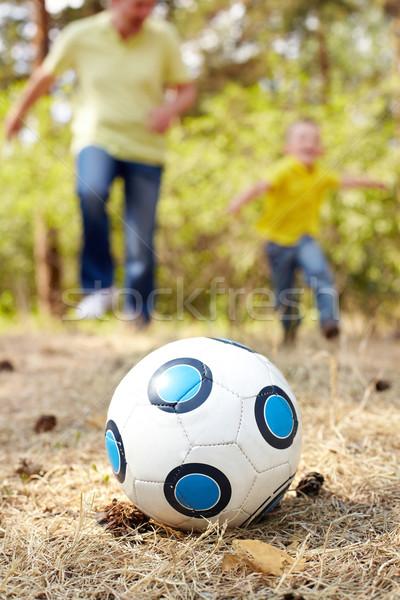 Ball on grassland Stock photo © pressmaster