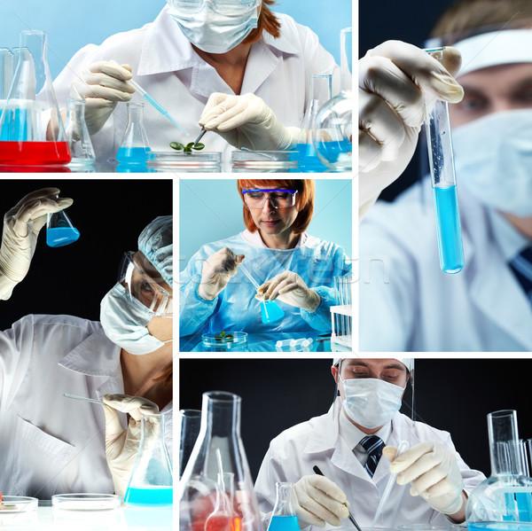 Biyo araştırma kolaj insanlar tıbbi üniforma Stok fotoğraf © pressmaster