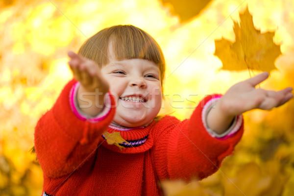 Autumnal magic Stock photo © pressmaster