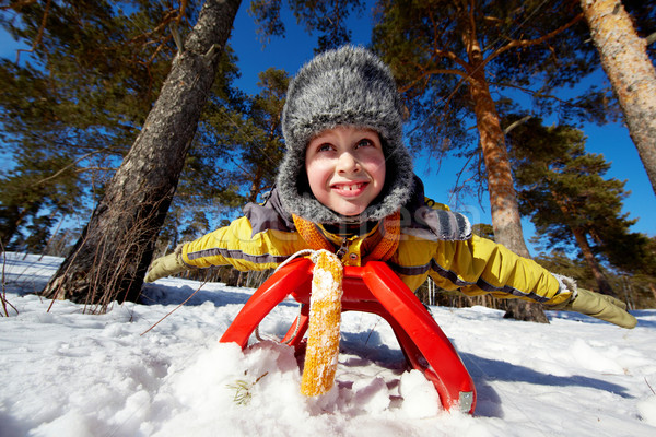 Chłopca sanki cute parku dziecko osoby Zdjęcia stock © pressmaster