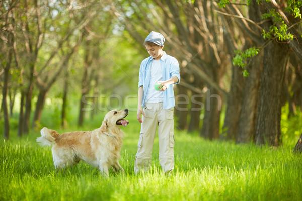 Játszik kutya portré aranyos legény labrador Stock fotó © pressmaster