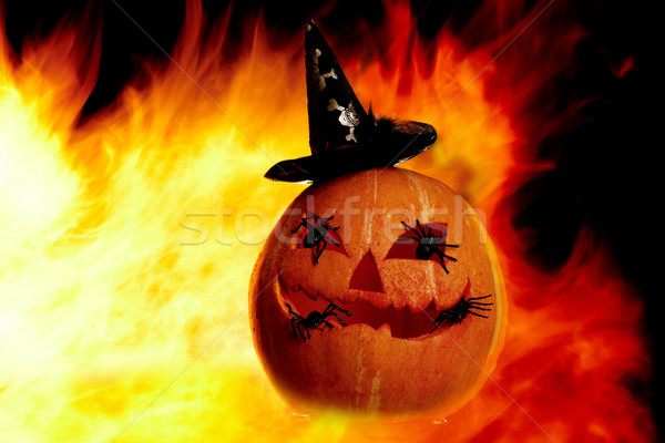 Flame with gourd  Stock photo © pressmaster